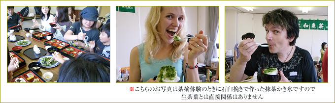 食べ方の例