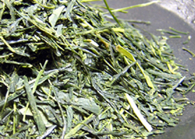 太陽の煎茶(夏)