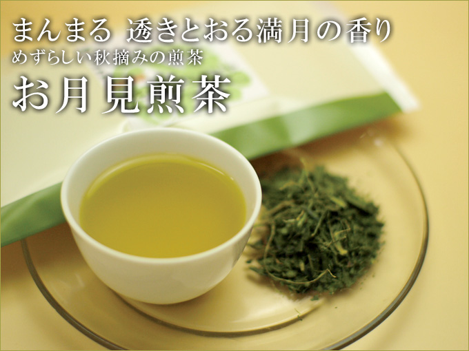Sencha of the Autumn Moon