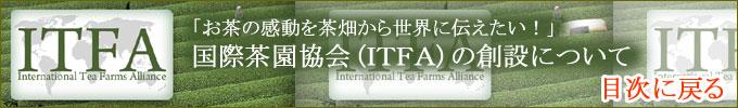 ITFA創設にむけての予定と報告