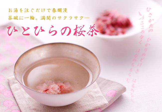 ひとひらの桜茶(さくら茶)
