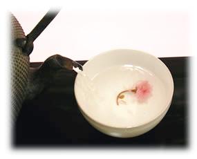 桜茶(さくら茶)