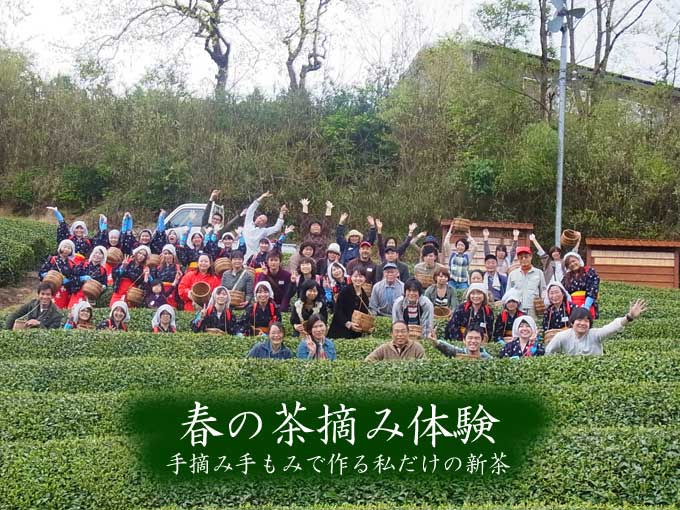 【報告】春の茶摘体験2011~手摘み手もみでつくる私だけの新茶