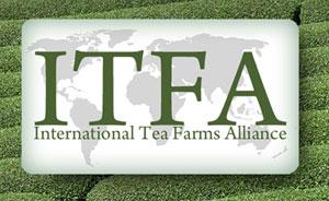 【日本茶を世界へ】米ラスベガスでのWorld Tea Expoに出展!(0日目)