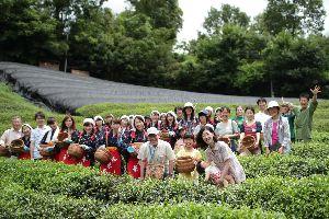 【イベント報告】夏の茶摘体験2012