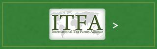 国際茶園協会 インターナショナル・ティー・ファーム・アライアンスページへ